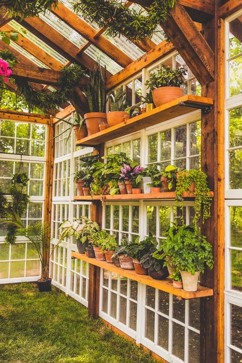 Easy to build a DIY greenhouse for your backyard. Put on your favorite garden shoes and get to it! If you're a serious gardener, you would love to get your hands on a greenhouse. So check out these easy ideas for a DIY greenhouse! Diy Greenhouse Plans, Backyard Greenhouse, Backyard Landscaping, Greenhouse Wedding, Small Greenhouse, Old Window Greenhouse, Greenhouse Shelves, Greenhouse Panels, Pallet Greenhouse