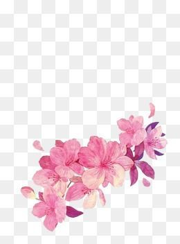 Painted Flowers Petal Pink Flower Png Transparent Clipart Image And Psd File For Free Download Pink Flower Painting Pink Flowers Background Flower Painting