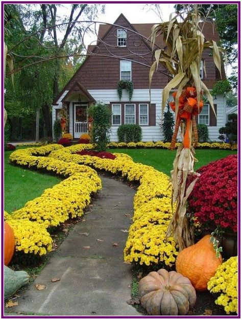30 Flowers Garden Ideas for Backyard that make your Home Fresher