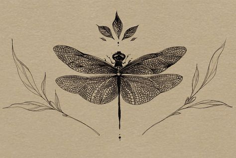 Botanical illustration on Behance Dragonfly Drawing, Dragonfly Tattoo, Flower Tattoo Foot, Flower Tattoos, Butterfly Tattoos, Time Tattoos, Body Art Tattoos, Key Tattoos, Foot Tattoos
