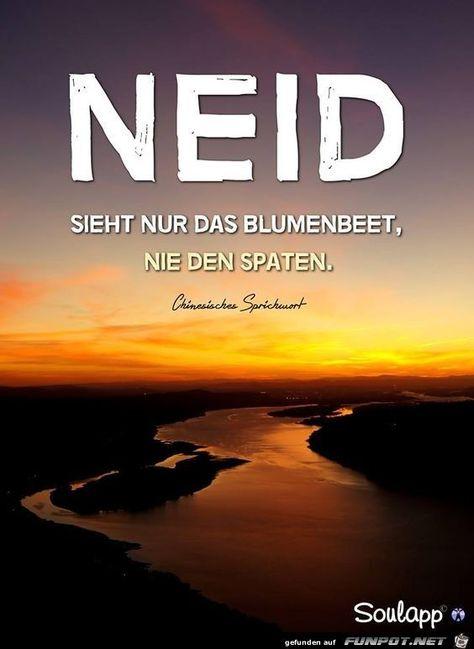#blumenbeet #sieht #neid #nur #dasDas  Das or DAS may refer to:
