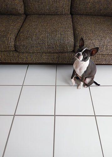Hy 300 Pet 1 カーネ1 ペット用 300角平 タイル通販 ボウクス タイルマーケット 犬と暮らす家 犬の部屋 床 タイル
