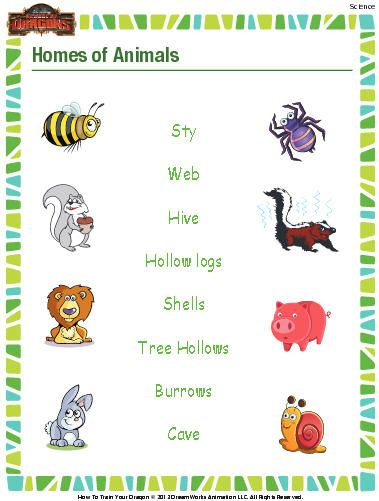 Animal Homes Worksheet Download Education World Science