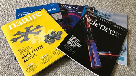 Journal impact factor gets a sibling that adjusts for scientific field | Science » LiveScience