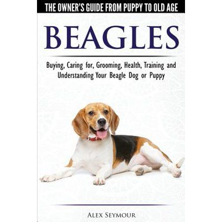 Books Beagle Beagle Dog Got Books