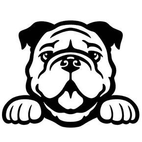 Bulldog Peeking Cute Dog 5 Vinyl Decal Window Sticker Bulldog