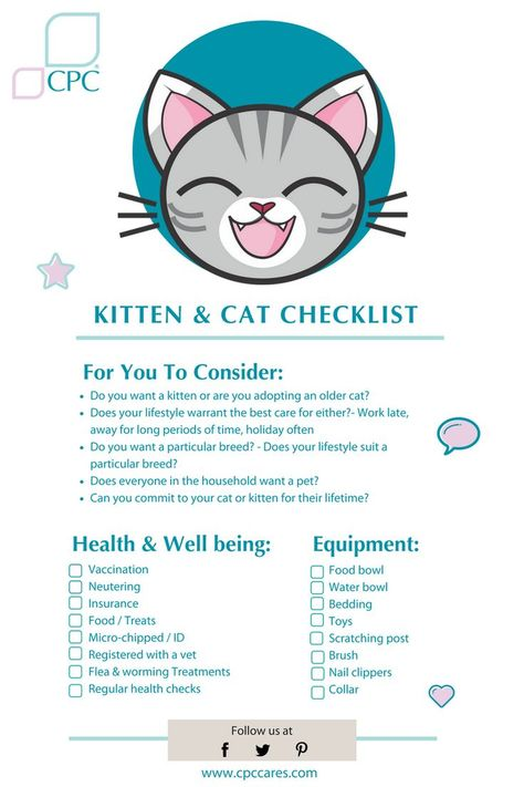 How Old Do Kittens Have To Be To Get Dewormed