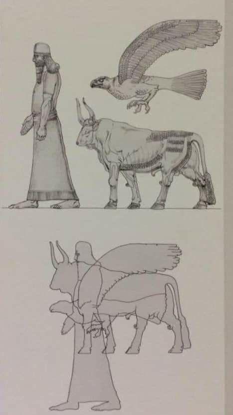 البناء التركيبي للثور الرافديني المجنح شيدو لاماسو فهو قوة تجمع أربعة عناصر تكون الكمال الثو In 2020 Humanoid Sketch Art Army