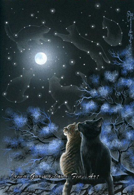 Tabby Cat Print Magic Of The Night  by Irina Garmashova