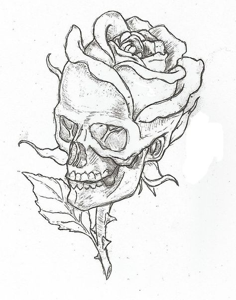 Skull And Rose Drawing Picture Flowers For Easy Drawings Of Roses And Skulls