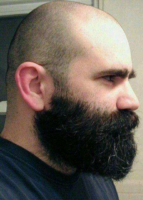 Bald With Beard Styles Bald With Beard Beard No Mustache Beard Styles Bald