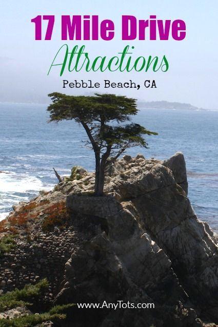 17 Mile Drive by Barbara Snyder Monterey California