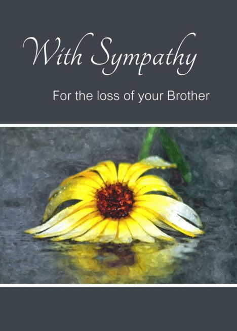 Sympathy For Loss Of Brother Condolences Yellow Flower In Rain