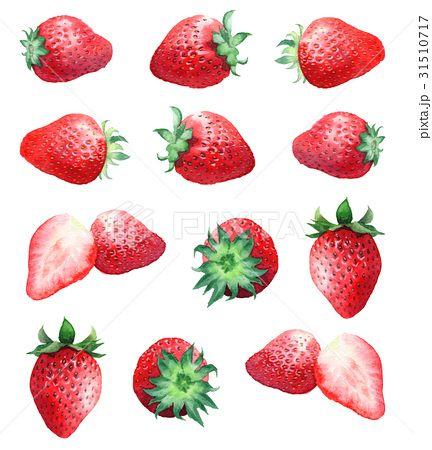 苺 おしゃれまとめの人気アイデア Pinterest Fukuda いちご イラスト いちご 食べ物 イラスト