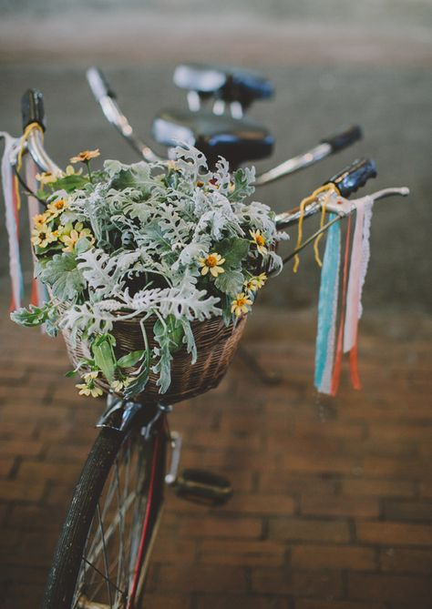 Flowers Bike Photo By Chellise Michael Hollandrad Fahrrad