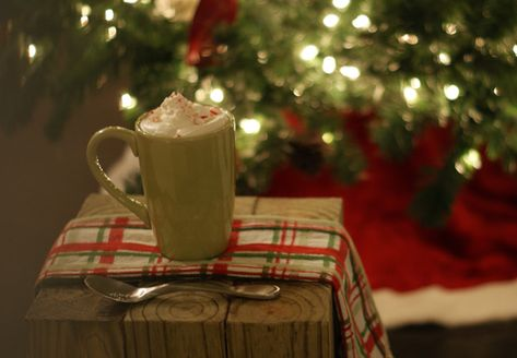 Peppermint hot cocoa with peppermint whip cream!
