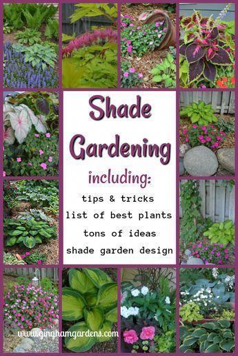 858a713c7242be69c9efc1b8c409dd57 - Where Can I Buy Gardening Supplies Near Me