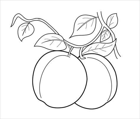 Seyda Toska Adli Kullanicinin Meyve Boyama Panosundaki Pin