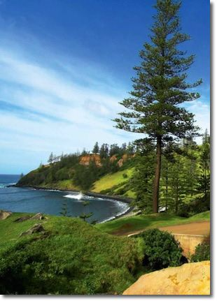 Best 25 norfolk island ideas on pinterest countries of best 25 norfolk island ideas on pinterest countries of australia great barrier reef information and holidays to australia sciox Gallery
