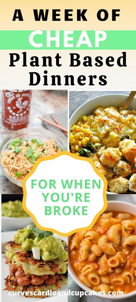 These frugal plant based dinner recipes will allow you to feed you large family a healthy inexpensive meal when youre broke or just trying to save some money. Frugal living with these cheap vegan dinn Dinner Recipes Easy Quick, Vegetarian Recipes Dinner, Easy Healthy Dinners, Easy Healthy Recipes, Whole Food Recipes, Meatless Dinner Ideas, Easy Vegitarian Dinner Recipes, Dinner Ideas For Family, Cheap Vegan Recipes