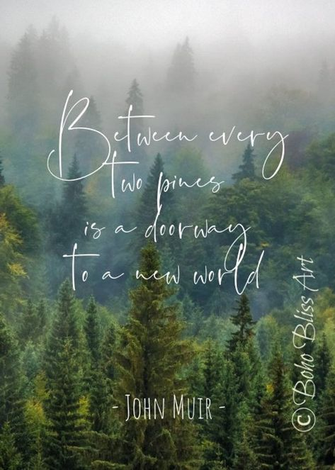 John Muir Quote: Between every two pines there is a doorway to a new world. Nature Quote Wall Art | Home or Office Decor | Instant Download #johnMuir #JohnMuirQuote #JohnMuirPrint #JohnMuirWallArt #NatureArt #NaturePrint #NatureQuote #NatureWallArt #NatureWallDecor #NatureDecor #NatureGift #Etsy
