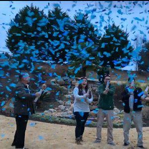 Gender Reveal Roulette Gender Reveal Prank Gender Reveal Ideas Gender Reveal Confetti Cannon Gender Reveal Popper Ready To Ship Gender Reveal Gender Pranks