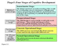 Stage Of Child Development Psychology Google Search Essay Help Writing Services Piaget