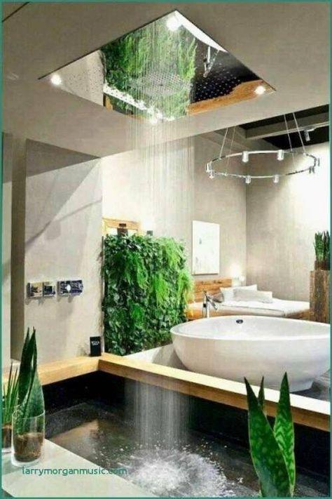 Moderne Badezimmer Ideen Regia Luxus Dusche Renovieren