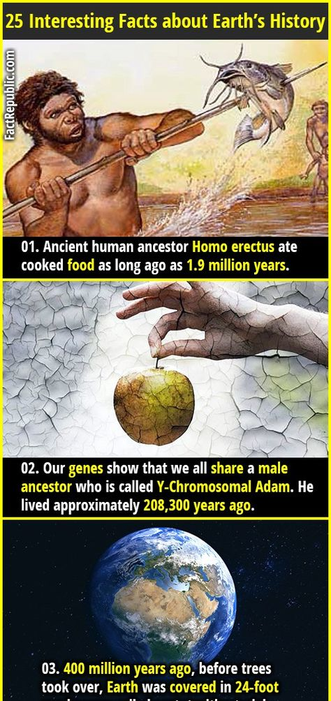 25 Interesting Facts about Earth's History   Fact Republic