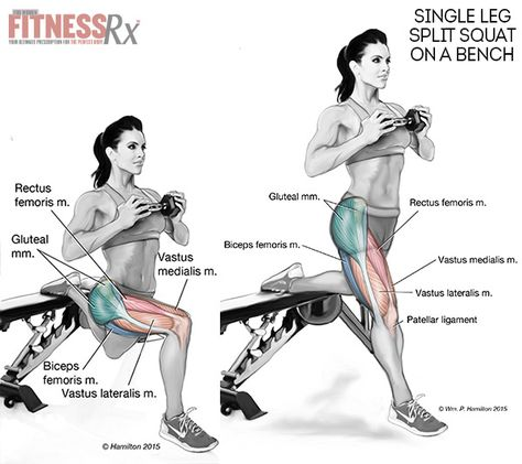 Single-leg Split Squats on a Bench - Shape Your Thighs for Summer