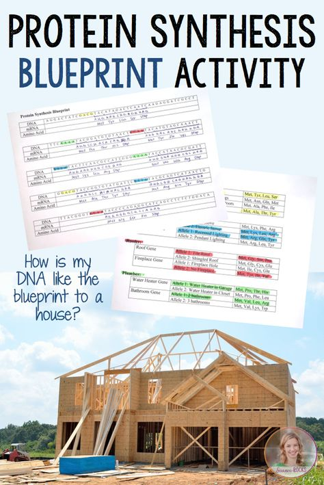 111 best DNA RNA images on Pinterest Life science, Physical - best of dna blueprint of life worksheet