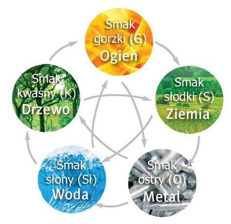 Kuchnia Pieciu Przemian In 2020 Tai Chi Person Personalized Items
