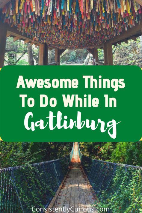 Things To Do In Gatlinburg, TN: Venturing Beyond the Strip