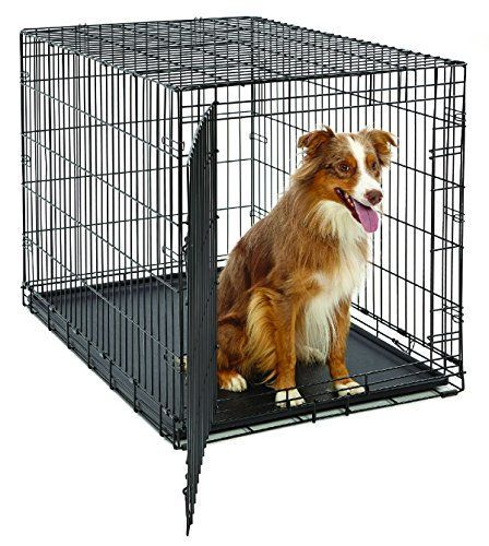 Large Dog Crate Midwest Life Stages Folding Metal Dog Crate