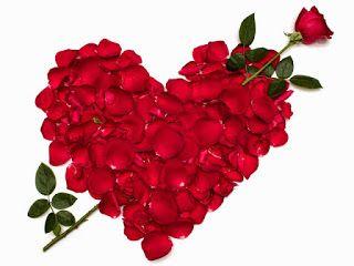 صور ورد وقلوب بوستات حب و رومانسية للفيس بوك Red Petals Beautiful Love Flowers Flower Pictures