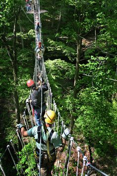 Courtesy Hocking Hills Zipline TourBeen to Hocking Hills before? Chances are you haven't been there this way. Soaring through treetops while hanging from a metal cable or walking a rope bridge over a gorge is the sort of thing that's.