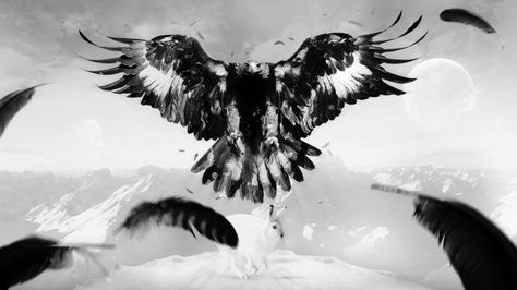 eagle hare art bird feathers mountains wallpaper background
