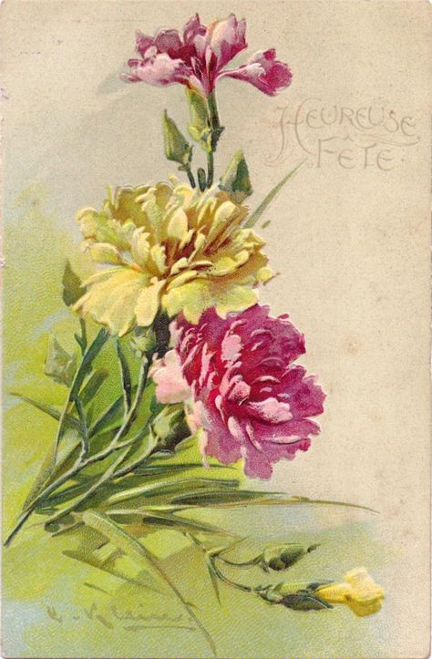 Pink And White Carnations In 2019 Catherine Klein Flower Art