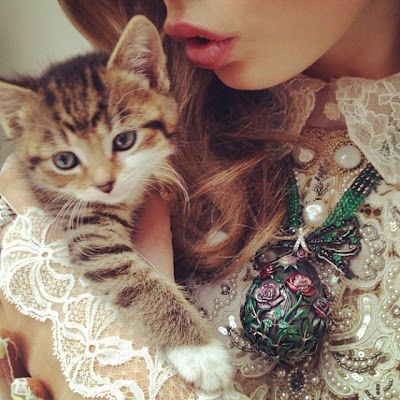 IMPOSSIBLY CUTE KITTEN OUTSHINES MODEL IN FABERG PHOTO SHOOT