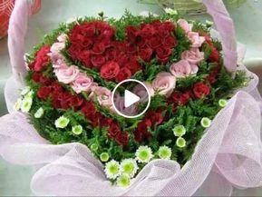 Descarga Las Mañanitas Especialmente Para Ti Feliz Cumpleaños Mp3 Gratis Feliz Cumpleaños Original Feliz Cumpleaños Mariachi Canciones De Feliz Cumpleaños