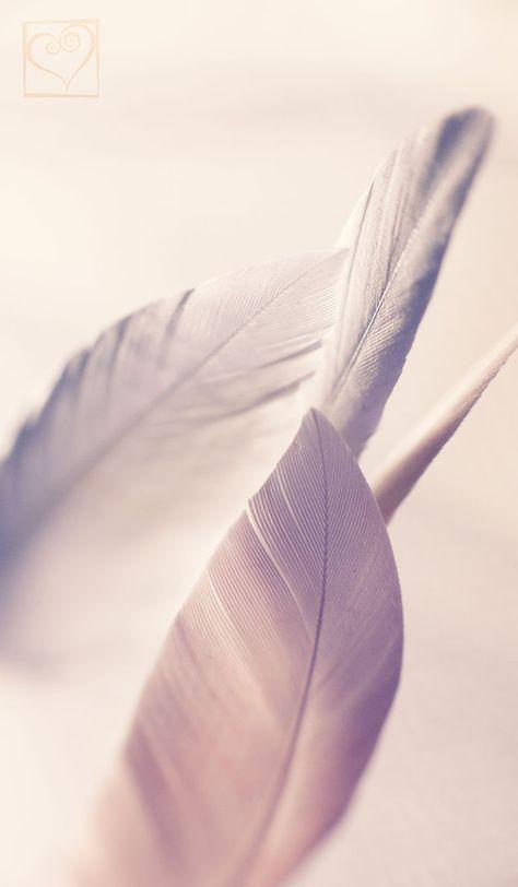 Breeze by HeartDriven on DeviantArt