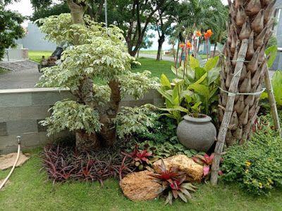 Tukang Taman Kudus Jasa Taman Rumah Di Kudus Jasa Pembuatan Taman Di Kota Kudus Green Garden Asri Taman Menanam Taman Tropis