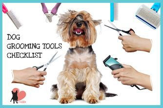 Dog Grooming At Home Tips The Ultimate Guide In 2020 Dog Grooming Grooming Dog Shampoo
