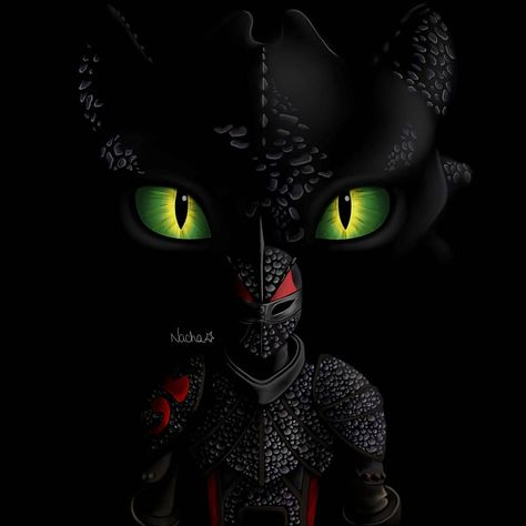 Anime Meme, Hiccup And Toothless, Hiccup Httyd, Toothless Drawing, Dragon Defender, Httyd Dragons, Dragon Sketch, How To Train Dragon, Dragon Rider