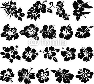 Hibiscus Flower Silhouettes