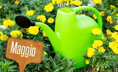I lavori nell'orto e nel giardino di maggio! | Giardinieri in affitto
