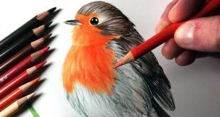 Comment Peindre A L Aquarelle Une Illustration Decor Pour