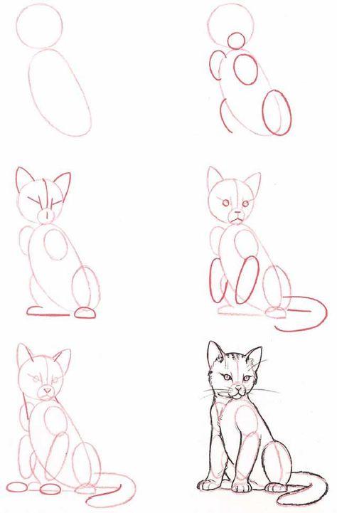Hoe teken je een zittende kat 2720