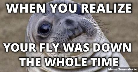 86e8190c6841bdf611438fc8c064426c seals fly your fly was down awkward seal moments pinterest awkward,Fly Down Meme