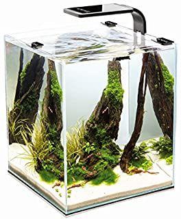 Aquael Shrimp Set Smart 2 10l 19l 30l Nano Aquarium Cube Fur Garnelen 75 26 4 6 Von 5 Sternen Top 100 Lampen Fur Pflanzen Nano Aquarium Pflanzen Aquarium